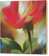 A Red Rose For Amelia Wood Print