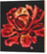 A Red Rose For You 2 Wood Print by Mariola Bitner