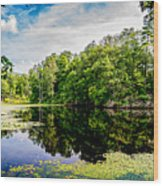 A Reflected Forest On A Lake With Lily Pads Wood Print