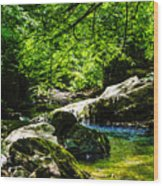 A Relaxing Place To Be Wood Print
