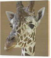 A Reticulated Giraffe Makes A Slanted Wood Print