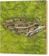 A Rio Grande Leopard Frog Sitting On A Wood Print