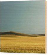 A Rise On The Plains Wood Print
