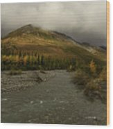 A River Runs Through The Brooks Range Alaska Wood Print