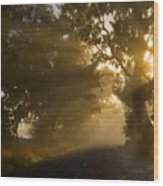 A Road Less Traveled Wood Print