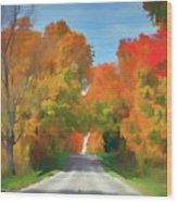 A Road Less Traveled Wood Print
