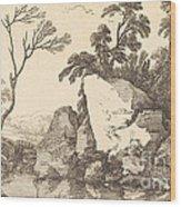 A Rocky Pond Wood Print