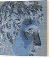 A Roman In Profile Wood Print