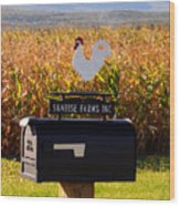 A Rooster Above A Mailbox 1 Wood Print