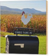 A Rooster Above A Mailbox 2 Wood Print
