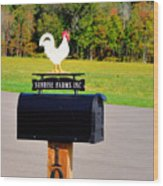 A Rooster Above A Mailbox 3 Wood Print