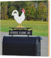 A Rooster Above A Mailbox 4 Wood Print