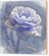 A Rose In Pastel Blue Wood Print