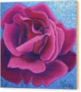 A Rose Is A Rose.. Wood Print