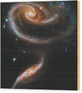 A Rose Made Of Galaxies Wood Print