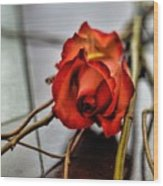 A Rose On Bamboo Wood Print