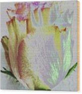 A Rosy Birthday Wish Wood Print