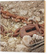 A Rusty Chain And Hook Wood Print