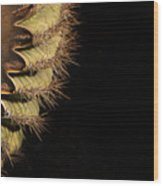 A Saguaro Section Wood Print