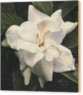 A Scent Of Gardenia Wood Print