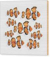 A School Of Clown Fish Wood Print
