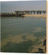 A Sea Of Seaweed Wood Print