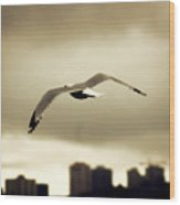 A Seagull Call Wood Print