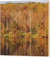 A Season Of Reflection Wood Print