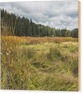 A Seasonal View Wood Print