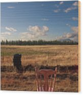 A Seat With A View Wood Print