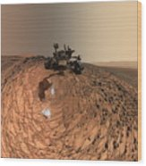 A Selfie On Mars Wood Print