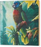 A Shady Spot - St. Lucia Parrot Wood Print