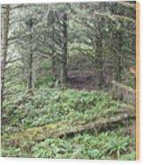 A Shady Spot Wood Print