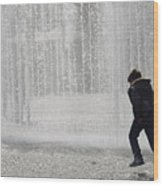 A Silhouette Of The Boy Against A Fountain Wood Print