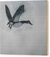A Single Goose Wood Print