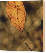 A Single Leaf In The Late Sun Wood Print