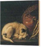 A Sleeping Dog With Terracotta Pot 1650 Wood Print
