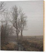 A Small Rural Creek  Wood Print