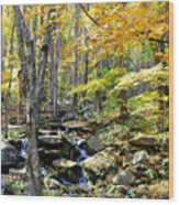 A Smokey Mountain Stream  Wood Print