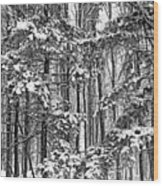 A Snowy Day Bw Wood Print