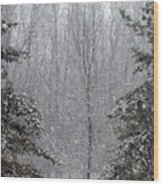 A Snowy Day In The Woods Wood Print
