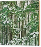 A Snowy Day - Paint Wood Print
