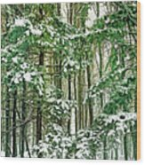 A Snowy Day Wood Print