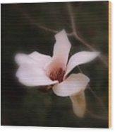 A Soft Glow Wood Print