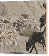A Soldier And His Dog Search An Area Wood Print