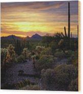 A Southern Arizona Sunset  Wood Print