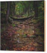 A Spot Of Sunshine Wood Print