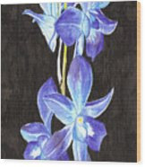 A Spray Of Orchids Wood Print
