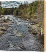 A Spring Day At Little Woodhull Creek Wood Print