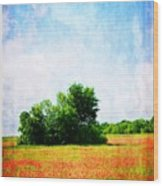 A Spring Day In Texas Wood Print